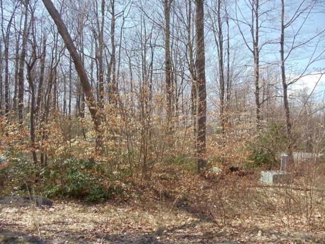 H31 Wolf Hollow Rd, Lake Harmony, PA 18624 (MLS #PM-66114) :: RE/MAX Results