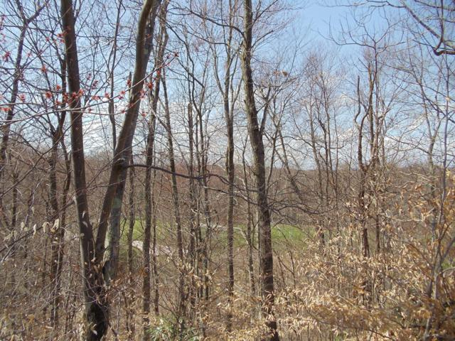 H28 Wolf Hollow Rd, Lake Harmony, PA 18624 (MLS #PM-66117) :: RE/MAX Results