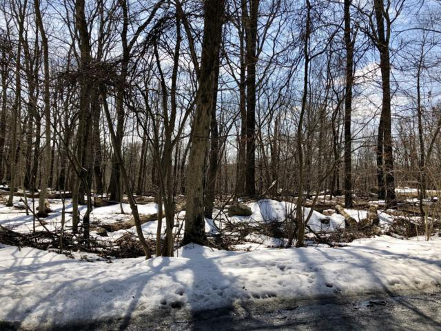 Lot # 79 Sanctuary Drive, East Stroudsburg, PA 18302 (MLS #PM-66181) :: Kelly Realty Group