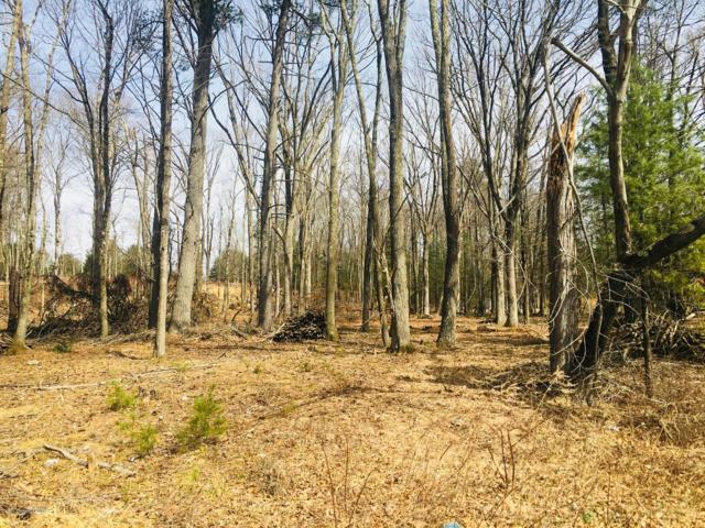 Lot 23 Rising Hill Dr, Saylorsburg, PA 18353 (MLS #PM-66494) :: Keller Williams Real Estate