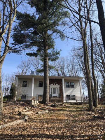 255 Faber Cir, Tannersville, PA 18372 (MLS #PM-66711) :: RE/MAX of the Poconos