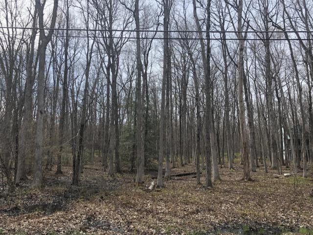 Lot 5LAN Dogwood Dr, Jim Thorpe, PA 18229 (MLS #PM-66855) :: Keller Williams Real Estate