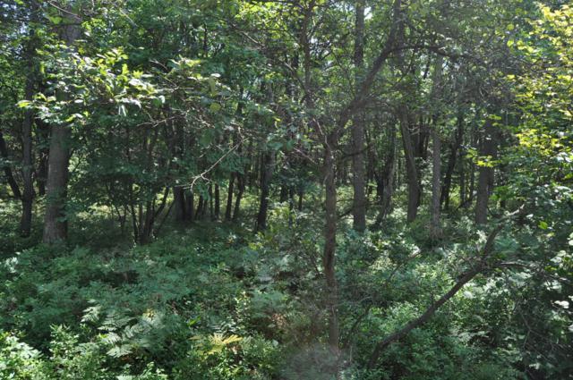 Lot A37 Berry Ln, Jim Thorpe, PA 18229 (MLS #PM-66908) :: Keller Williams Real Estate