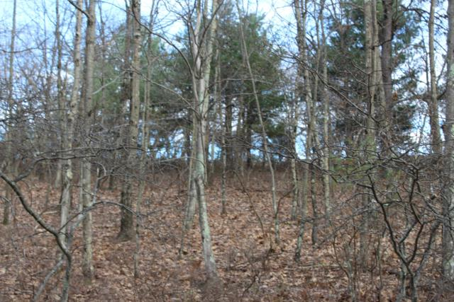 Lot 31 Section 5A, Bushkill, PA 18324 (MLS #PM-66977) :: RE/MAX of the Poconos
