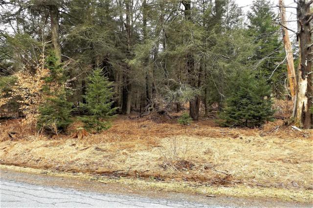 1307 Sawmill Rd, Pocono Lake, PA 18347 (MLS #PM-66987) :: RE/MAX of the Poconos