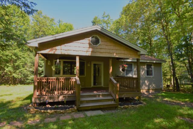 40 Ash Dr, Jim Thorpe, PA 18229 (MLS #PM-67161) :: Keller Williams Real Estate