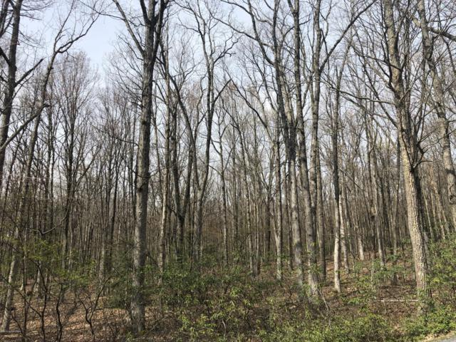 Lot A50 Bayberry Rd, Jim Thorpe, PA 18229 (MLS #PM-67193) :: Keller Williams Real Estate