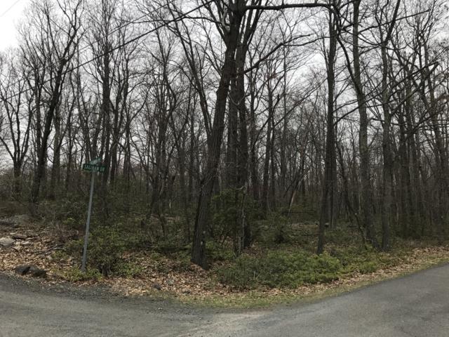Lot #541 Saginaw Dr, Jim Thorpe, PA 18229 (MLS #PM-67322) :: Keller Williams Real Estate
