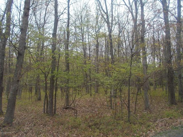 Piney Woods Dr, Jim Thorpe, PA 18229 (MLS #PM-67439) :: Keller Williams Real Estate