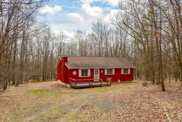 14 Iroquois Road, Albrightsville, PA 18210 (MLS #PM-67452) :: Keller Williams Real Estate