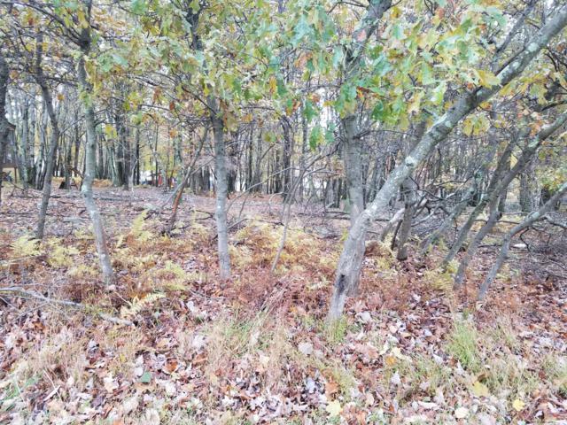 LOT 72 Pine Ridge Dr. E, Bushkill, PA 18324 (MLS #PM-68006) :: RE/MAX of the Poconos