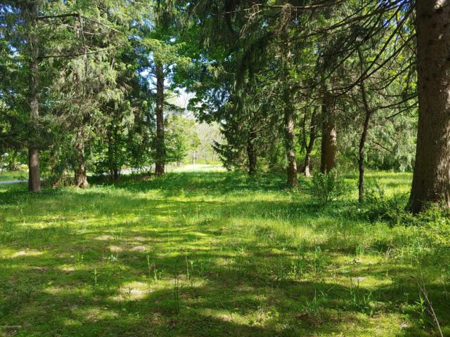 197 Hypsie Gap Rd, Stroudsburg, PA 18360 (MLS #PM-68207) :: Keller Williams Real Estate