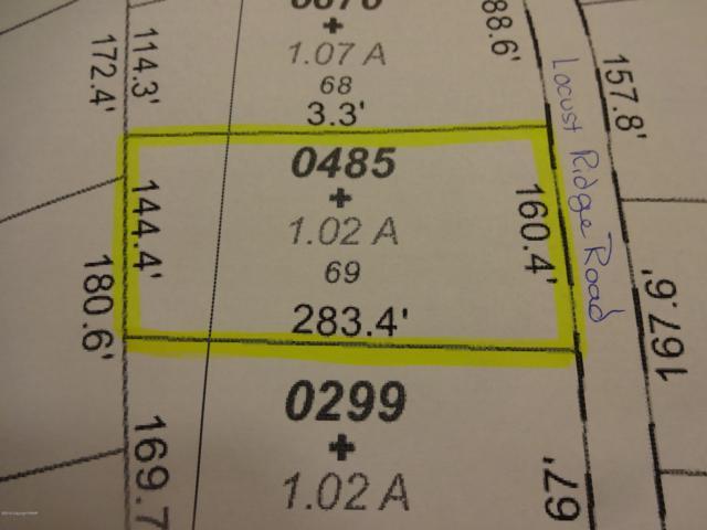 69 Locust Ridge Rd., Pocono Lake, PA 18347 (MLS #PM-68477) :: Kelly Realty Group