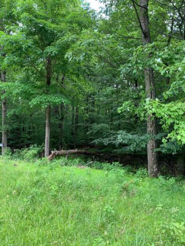144 Saddle Creek Dr, Upper Mt. Bethel, PA 18343 (MLS #PM-68782) :: Keller Williams Real Estate
