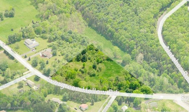 25 Evergreen Hollow Rd, Effort, PA 18330 (MLS #PM-68922) :: RE/MAX of the Poconos
