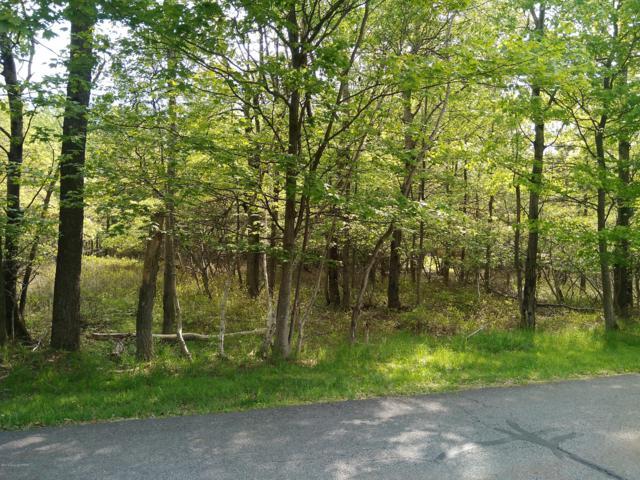 Poplar Pl, Blakeslee, PA 18610 (MLS #PM-68953) :: Keller Williams Real Estate