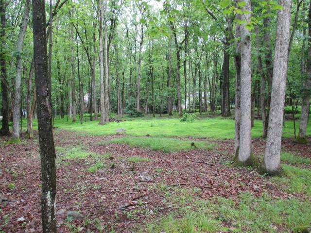 Lot c19MW Indian Trl, Jim Thorpe, PA 12864 (MLS #PM-69219) :: Keller Williams Real Estate