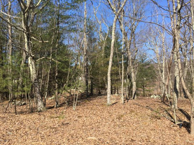 Wild Acres Dr, Dingmans Ferry, PA 18328 (MLS #PM-69320) :: Keller Williams Real Estate