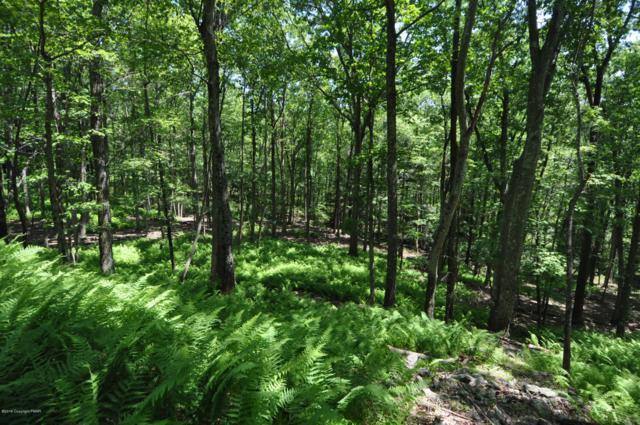Lot A204A Teaberry Ln, Jim Thorpe, PA 18229 (MLS #PM-69418) :: Keller Williams Real Estate