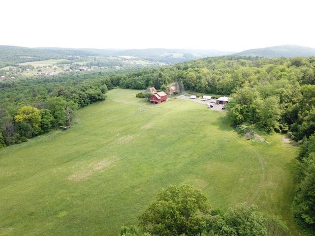 254 Tanzosh Trail, Kunkletown, PA 18058 (MLS #PM-70022) :: Keller Williams Real Estate