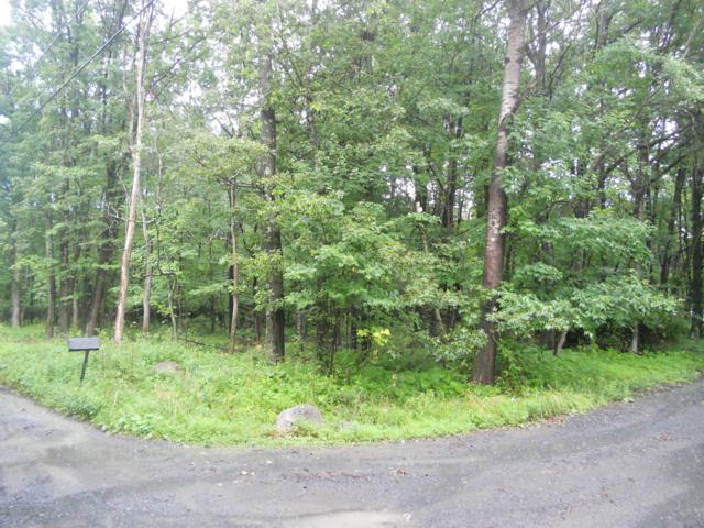 710 Johns Rd, Effort, PA 18330 (MLS #PM-70030) :: RE/MAX of the Poconos