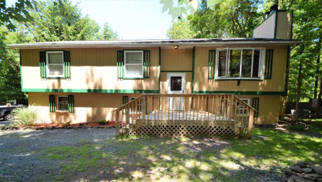 147 Winding Way, Albrightsville, PA 18210 (MLS #PM-70195) :: Keller Williams Real Estate