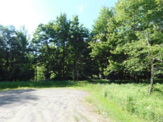 138 White Birch Ridge Dr, Lake Ariel, PA 18436 (MLS #PM-70357) :: Keller Williams Real Estate