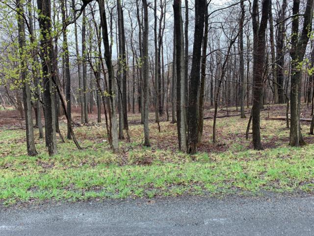 LOT 1 Birch Brier Dr, Effort, PA 18330 (MLS #PM-70495) :: Keller Williams Real Estate