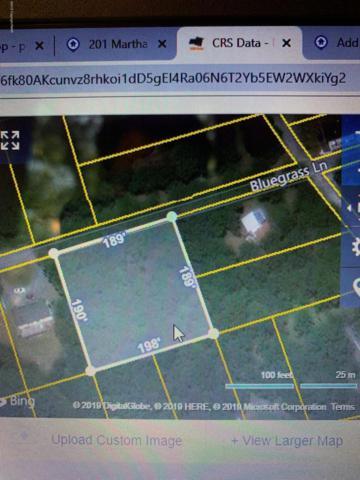 1 Juniper, Effort, PA 18330 (MLS #PM-70586) :: Keller Williams Real Estate