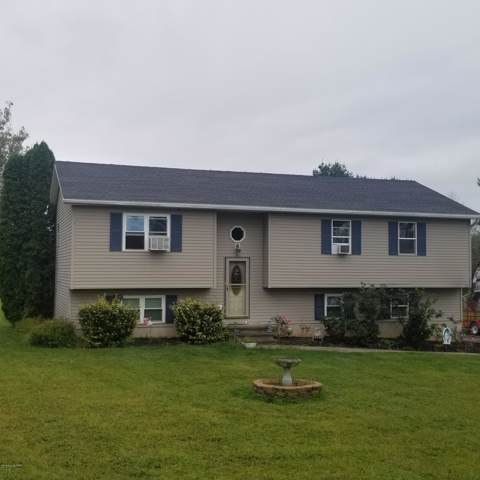 7337 Birch Dr, Kunkletown, PA 18058 (MLS #PM-72078) :: RE/MAX of the Poconos