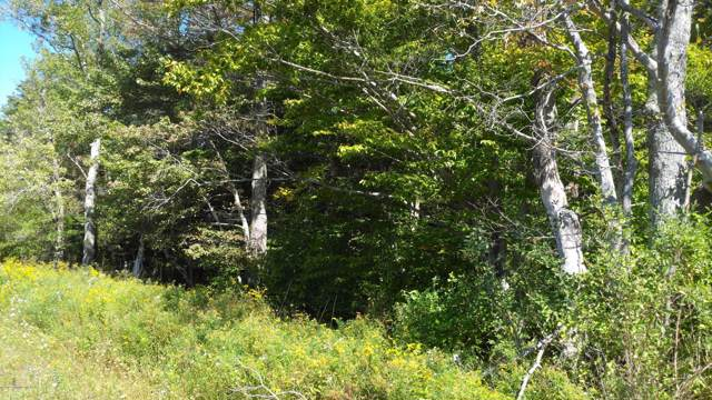 901 Spur, Pocono Lake, PA 18347 (MLS #PM-72113) :: Keller Williams Real Estate