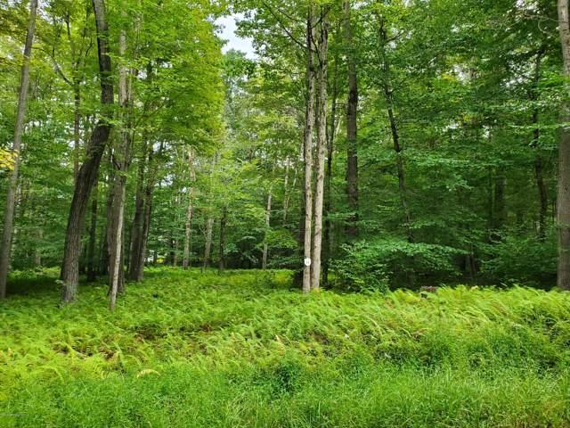 15 Oak Leaf Ln, Pocono Lake, PA 18347 (MLS #PM-72115) :: Keller Williams Real Estate