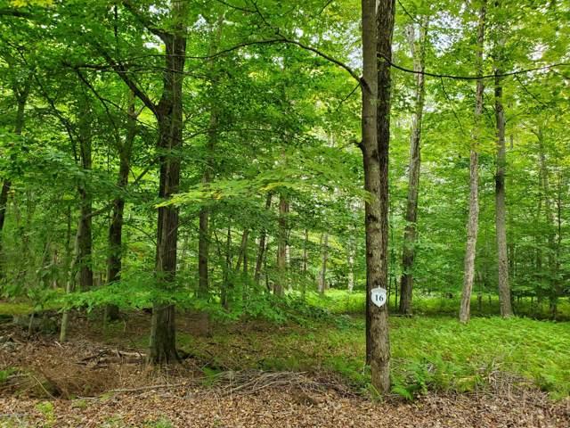 16 Oak Leak Ln, Pocono Lake, PA 18347 (MLS #PM-72116) :: Keller Williams Real Estate