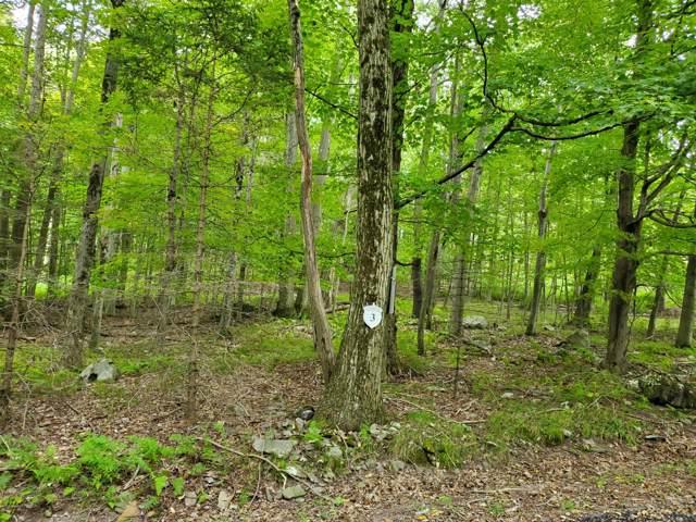 3 Tall Oak Ln, Pocono Lake, PA 18347 (MLS #PM-72122) :: Keller Williams Real Estate