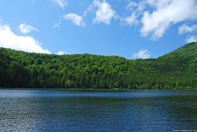 Lake Newfoundland, Newfoundland, PA 18445 (MLS #PM-72333) :: Keller Williams Real Estate