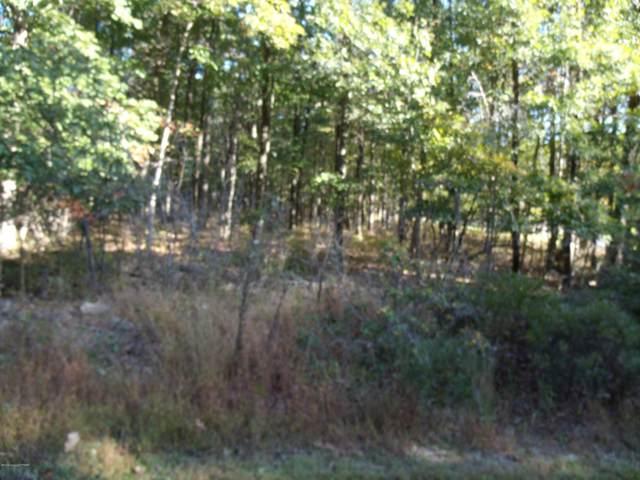 1161 Broadview Dr, Jim Thorpe, PA 18229 (MLS #PM-72565) :: Keller Williams Real Estate