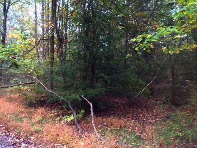 Lot 19 Lake Dr, Nesquehoning, PA 18240 (MLS #PM-73818) :: Keller Williams Real Estate