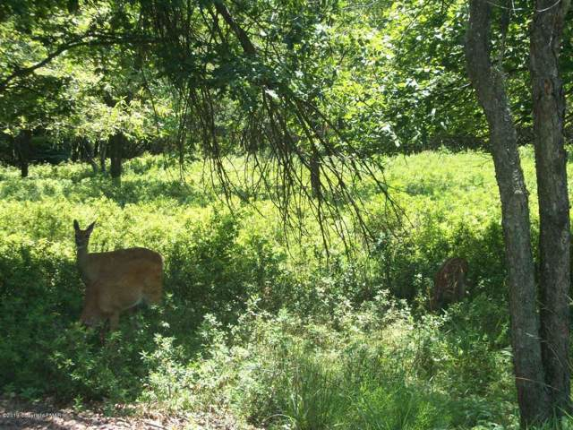 lot A12 Valley View Acres Dr, Palmerton, PA 18225 (MLS #PM-73877) :: Keller Williams Real Estate