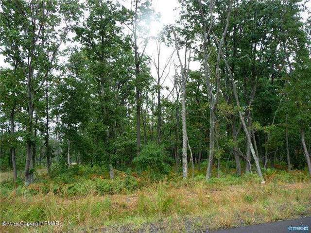 263 Butternut Lane, Hazleton, PA 18202 (MLS #PM-74594) :: Kelly Realty Group