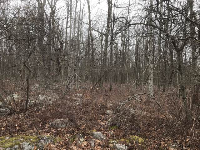 Lot#A259 White Oak Ln, Jim Thorpe, PA 18229 (#PM-74917) :: Jason Freeby Group at Keller Williams Real Estate