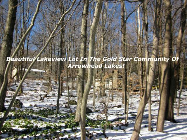 Lake Shore Dr, Pocono Lake, PA 18347 (MLS #PM-75453) :: RE/MAX of the Poconos