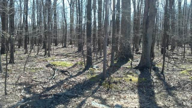Lot 31,32 Lenape Dr, East Stroudsburg, PA 18302 (MLS #PM-76011) :: Kelly Realty Group