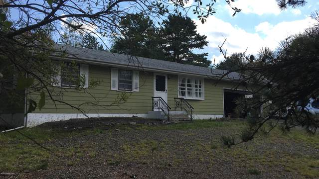 132 Azalea Dr, Albrightsville, PA 18210 (MLS #PM-76070) :: Kelly Realty Group