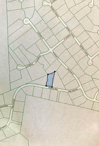 85 Winding Way, Saylorsburg, PA 18353 (MLS #PM-76337) :: Keller Williams Real Estate