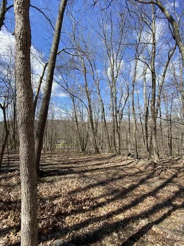 Lot 209 Meadow Lark Circle, Bushkill, PA 18324 (MLS #PM-76939) :: Keller Williams Real Estate