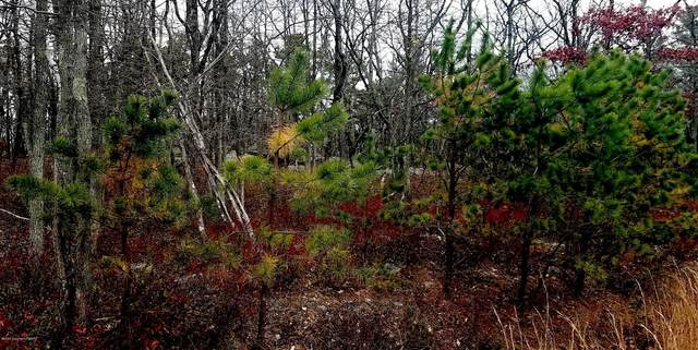 Lot-118WSS Peace Pipe Dr, Hazleton, PA 18202 (MLS #PM-77075) :: RE/MAX of the Poconos