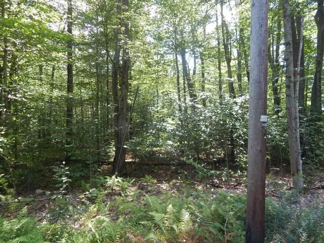 1013 White Pine Dr, Pocono Lake, PA 18347 (MLS #PM-77613) :: RE/MAX of the Poconos