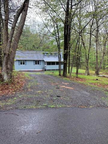 16 Seegar Path, Albrightsville, PA 18210 (#PM-77737) :: Jason Freeby Group at Keller Williams Real Estate
