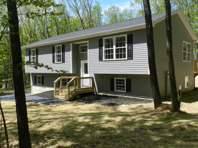 195 Paw Paw Dr, Kunkletown, PA 18058 (MLS #PM-77738) :: RE/MAX of the Poconos