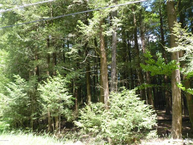 LOT 241 King Arthur Rd, Pocono Lake, PA 18347 (MLS #PM-77750) :: RE/MAX of the Poconos